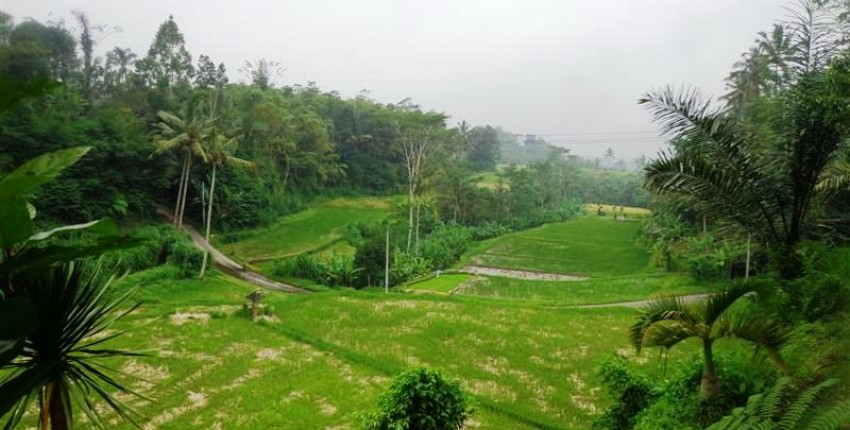 Land for sale in Ubud Bali hillside and ricefields view – LUB162