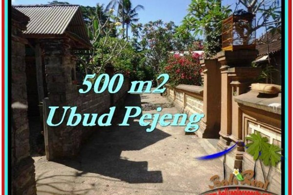 Exotic LAND IN Ubud Pejeng BALI FOR SALE TJUB515