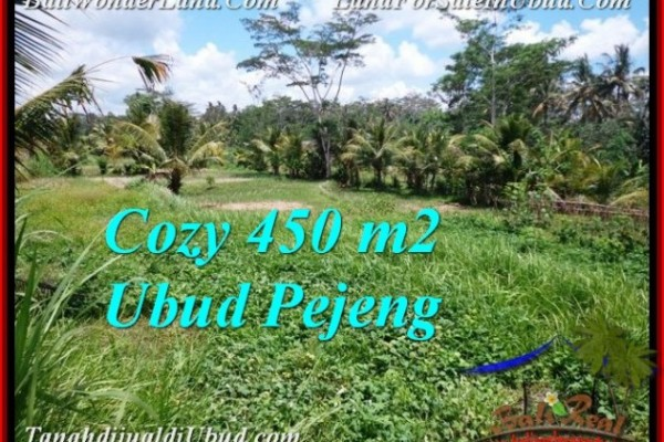 Exotic Ubud Pejeng BALI LAND FOR SALE TJUB535