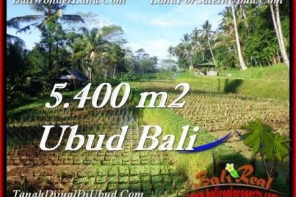 FOR SALE 5,400 m2 LAND IN UBUD TJUB554
