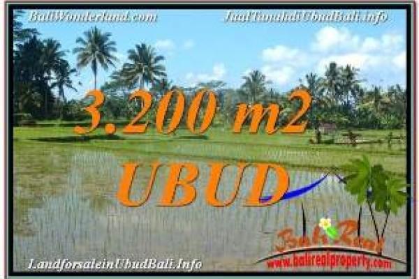 FOR SALE Affordable PROPERTY 3,200 m2 LAND IN UBUD BALI TJUB628