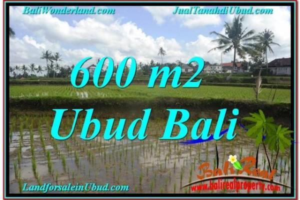 FOR SALE LAND IN Ubud Pejeng BALI TJUB621
