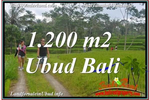 Exotic 1,200 m2 LAND SALE IN UBUD TJUB624