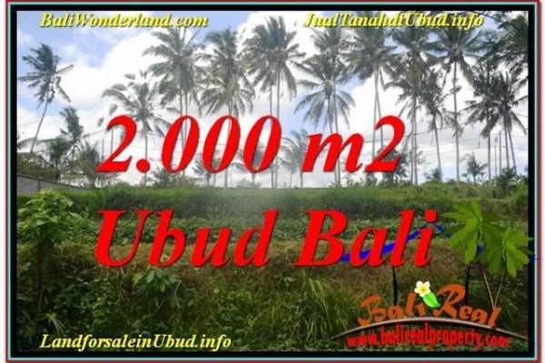 Magnificent UBUD BALI 2,000 m2 LAND FOR SALE TJUB625