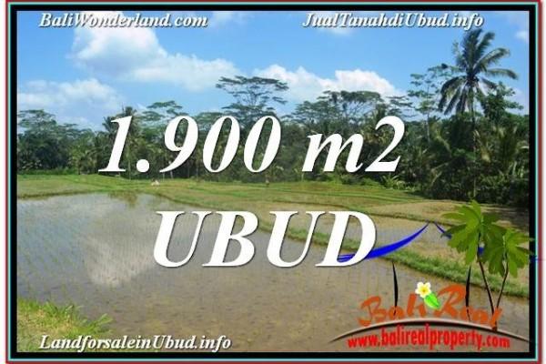 FOR SALE Affordable PROPERTY 1,900 m2 LAND IN UBUD BALI TJUB629