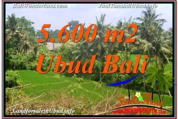 Exotic 5,600 m2 LAND IN UBUD BALI FOR SALE TJUB636