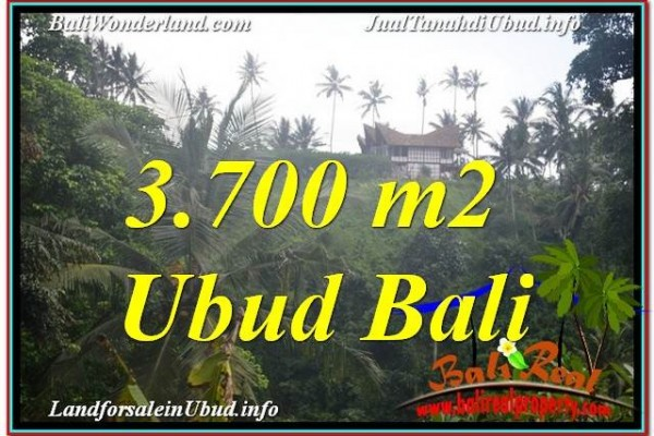 Affordable LAND FOR SALE IN Sentral / Ubud Center BALI TJUB640