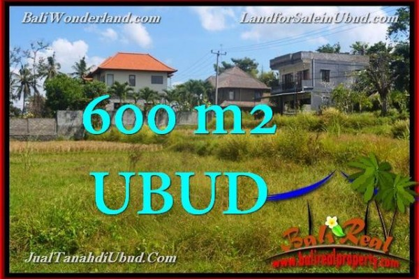 FOR SALE Beautiful PROPERTY 600 m2 LAND IN UBUD BALI TJUB664