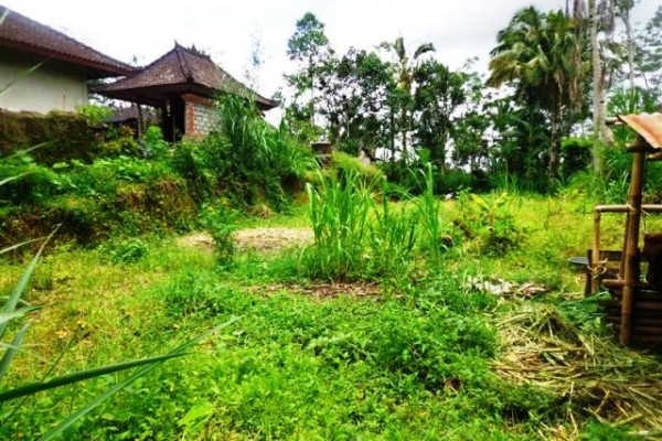 Land for sale in Ubud Bali perfect place for your dream villa – LUB166