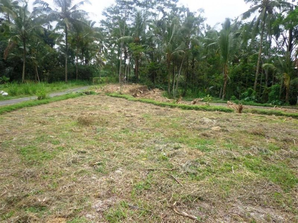 Land for sale in Ubud very suitable for villa – LUB108