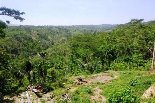 Land for sale in Ubud spectacular mountain and rice fields view – LUB132