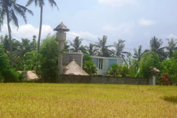 Land for sale in Ubud Bali, rice fields view in Ubud Center – LUB150