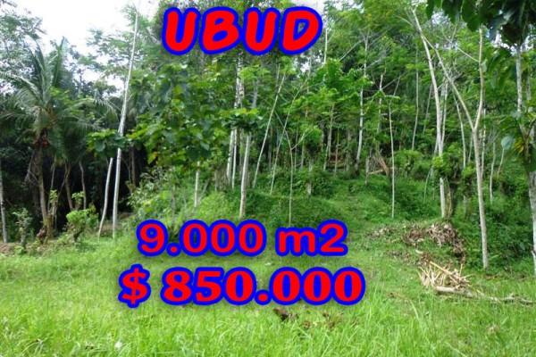Land in Ubud for sale, Outstanding view in Ubud Pejeng Bali – TJUB239