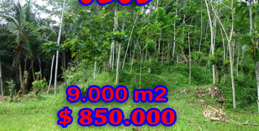 Land for sale in Bali, Fantastic view in Ubud Bali – 9.000 m2 @ $ 94