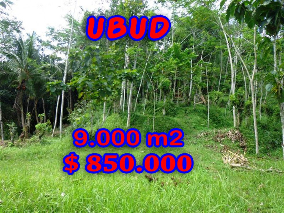 Land for sale in Bali, Spectacular view in Ubud Bali – 14.000 m2 @ $ 86
