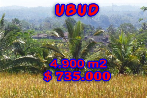 Land for sale in Ubud Bali rice fields and mountain view
