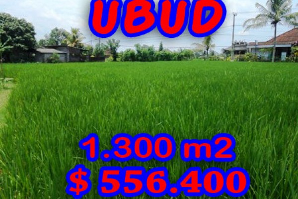Land for sale in Ubud Bali 13 Ares in Ubud Center