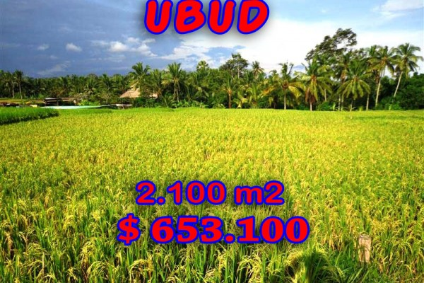 Land for sale in Ubud Bali 2,100 m2 with mountain and rice fields view