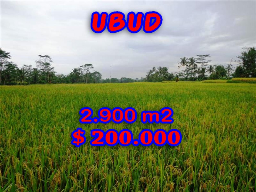 Exotic Property for sale in Bali, Land in Ubud for sale– 2.900 m2 @ $ 69