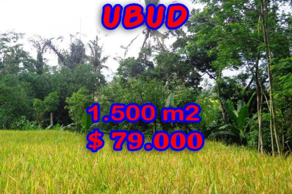 Exotic Property for sale in Bali, Land in Ubud for sale– 1.500 m2 @ $ 52