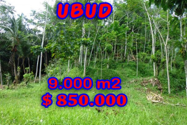 Exotic Property in Bali, Land for sale in Ubud Bali – 9.000 sqm @ $ 94