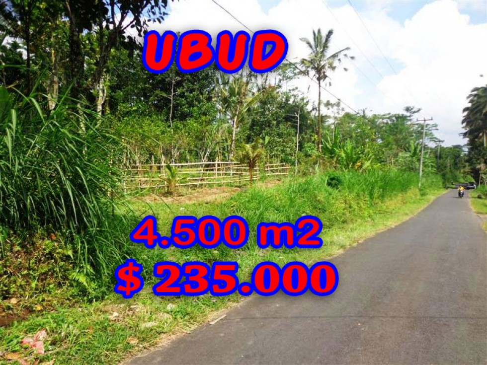 Land in Bali for sale, Great view in Ubud Bali – 4.500 m2 @ $ 52