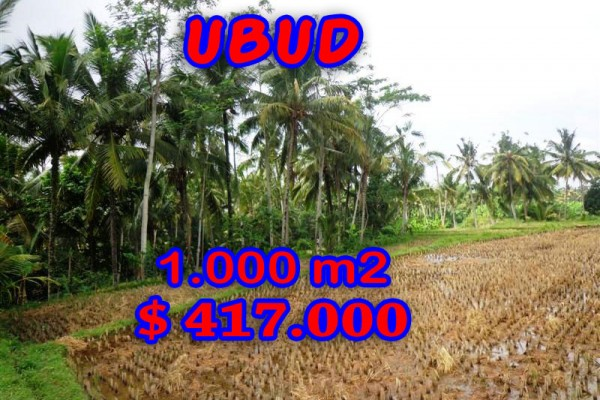 Land for sale in Bali, Incredible view in Ubud Bali – 1.000 m2 @ $ 417