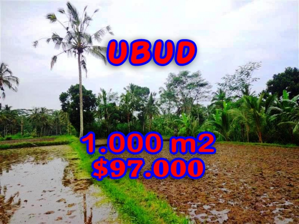 Land for sale in Bali, Outstanding view in Ubud Bali – 1.000 m2 @ $ 97