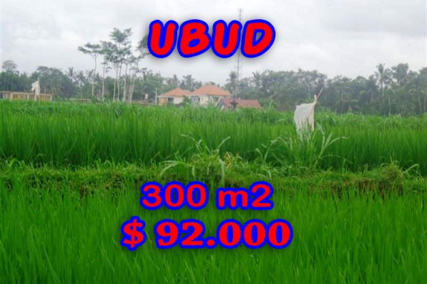 Splendid Property for sale in Bali, Ubud land for sale – 300 sqm @ $ 306
