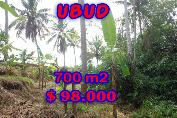 Unbelievable Property for sale in Bali, land for sale in Ubud Bali  – 700 m2 @ $ 139