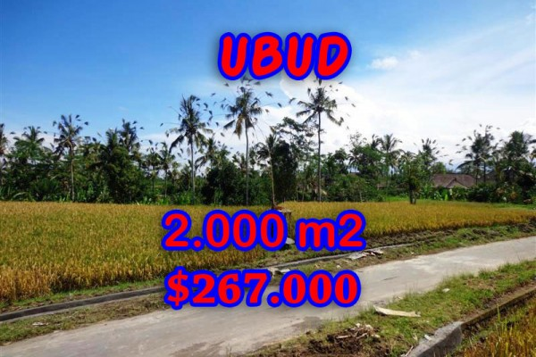 Astounding Property in Bali, Land in Ubud Bali for sale – 2.000 m2 @ $ 133