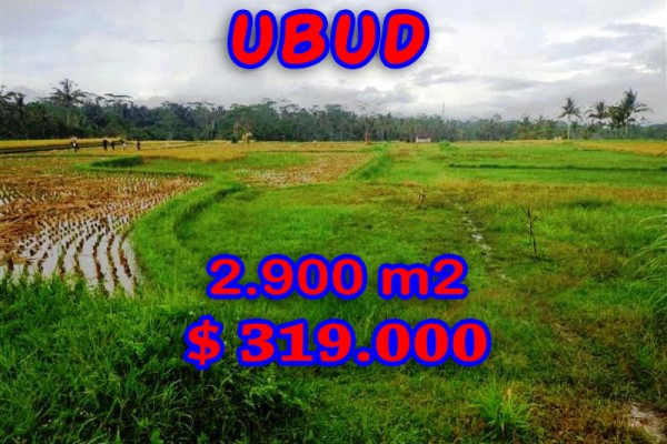 Land for sale in Bali, Fantastic view in Ubud Bali – 2.900 sqm @ $ 110
