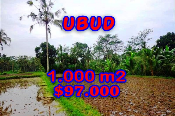Land for sale in Bali, Beautiful view in Ubud Bali – 1.000 sqm @ $ 97