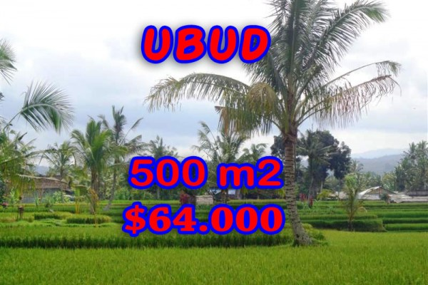 Land for sale in Bali, Amazing view in Ubud Bali – 500 sqm @ $ 128