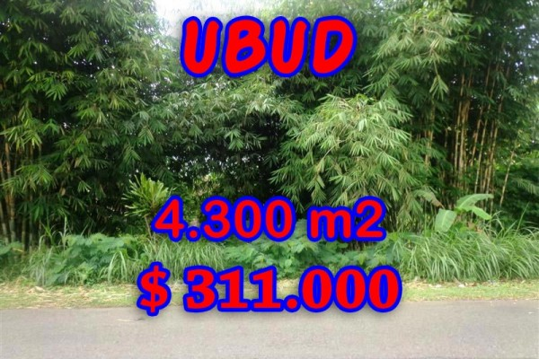 Land in Ubud for sale, Stunning view in Ubud Tegalalang Bali – TJUB294