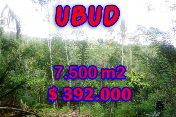 Exotic Land for sale in Ubud Bali, jungle view by the river in Ubud Tegalalang– TJUB290