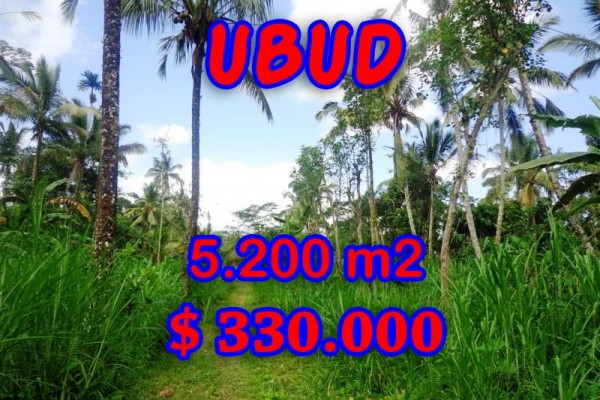 Land in Bali for sale, Excellent Property in Ubud Bali – 5,200 sqm @ $ 63