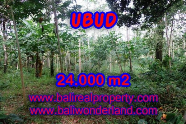 Amazing Property in Bali, Land for sale in Ubud Bali – 24.000 m2 @ $ 106