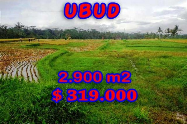 Land for sale in Bali, Fantastic view in Ubud Bali – 2.900 m2 @ $ 110