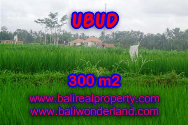 Land for sale in Bali, Incredible property in Ubud Bali – 300 m2 @ $ 306