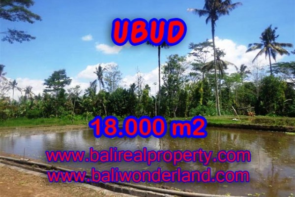 Fantastic Property in Bali, Land for sale in Ubud Bali – 18,000 m2 @ $ 83