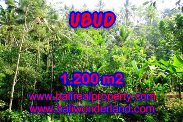 Astounding Property in Bali, Land in Ubud Bali for sale – 1.200 m2 @ $ 110
