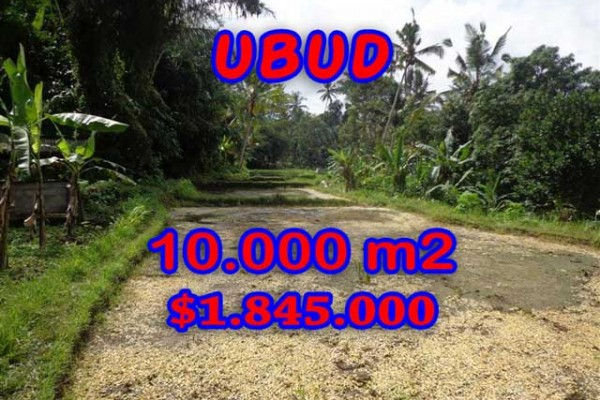 Terrific Property for sale in Bali, land for sale in Ubud Bali  – 10.000 m2 @ $ 184