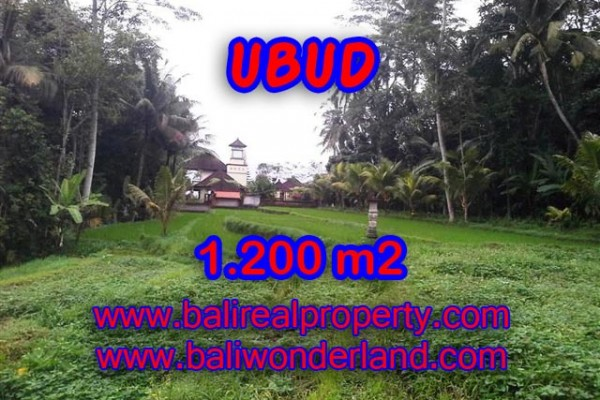 Land for sale in Bali, Interesting view in Ubud Bali – 1,200 m2 @ $ 206