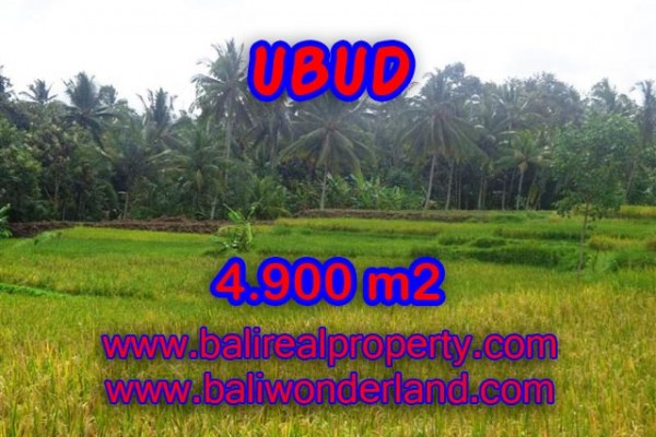 Land for sale in Bali, Magnificent view in Ubud Bali – 4.900 m2 @ $ 217