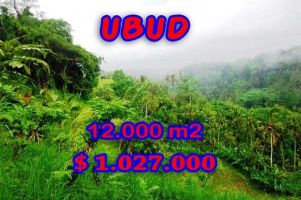 Land for sale in Bali, Spectacular view in Ubud Bali – 12.000 m2 @ $ 86