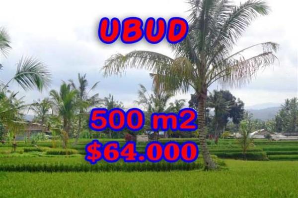 Property for sale in Ubud Bali, Superb land for sale in Ubud Tegalalang   – 500 m2 @ $ 128