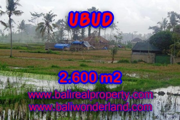 Land for sale in Bali, Exceptional view in Ubud Bali – 2.600 m2 @ $ 261