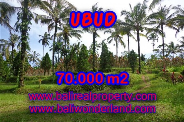 Land for sale in Bali, Magnificent view in Ubud Bali – 70.000 m2 @ $ 95