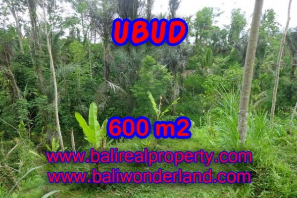 Attractive Property for sale in Bali, Ubud land for sale – 600 m2 @ $ 75